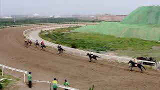 Horse race opening ceremony kicks off in north China
